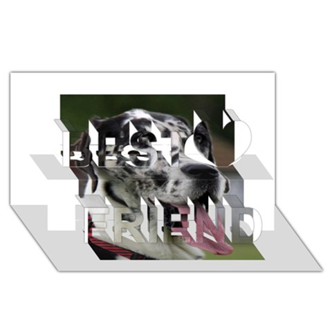Great Dane harlequin  Best Friends 3D Greeting Card (8x4)