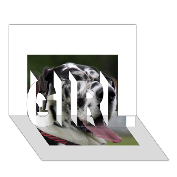 Great Dane harlequin  GIRL 3D Greeting Card (7x5)