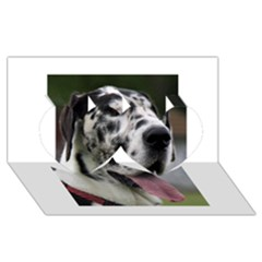 Great Dane harlequin  Twin Hearts 3D Greeting Card (8x4)