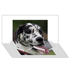 Great Dane harlequin  Twin Heart Bottom 3D Greeting Card (8x4)