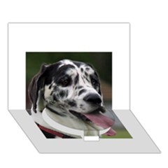 Great Dane harlequin  Circle Bottom 3D Greeting Card (7x5)