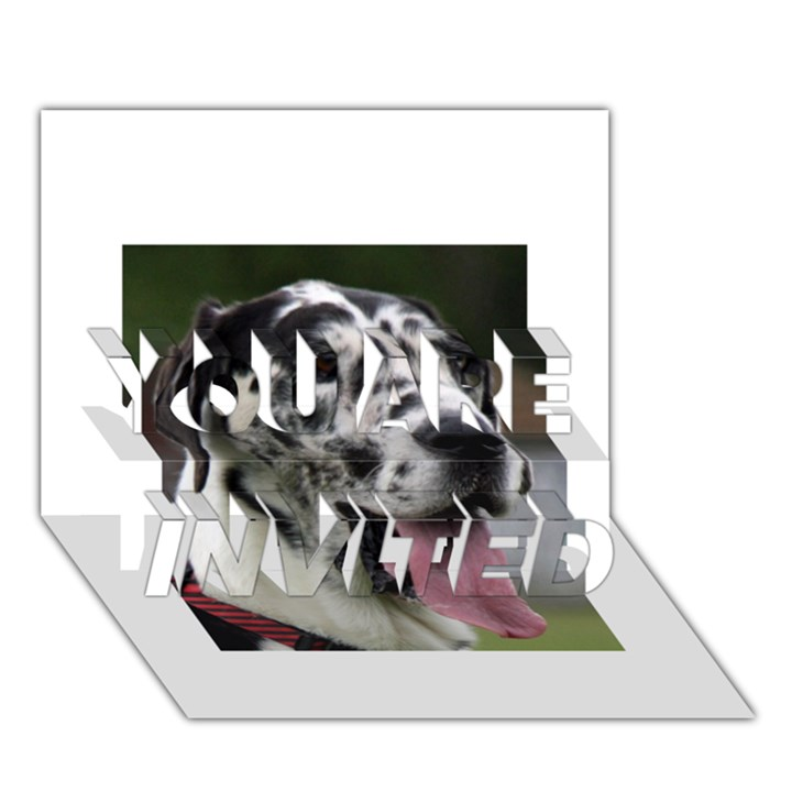 Great Dane harlequin  YOU ARE INVITED 3D Greeting Card (7x5)