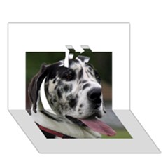 Great Dane harlequin  Apple 3D Greeting Card (7x5)
