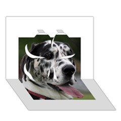 Great Dane harlequin  Clover 3D Greeting Card (7x5)
