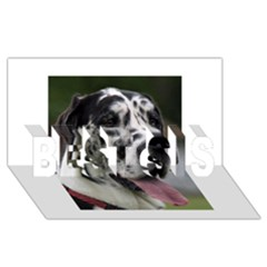Great Dane harlequin  BEST SIS 3D Greeting Card (8x4)