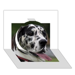 Great Dane harlequin  Circle 3D Greeting Card (7x5)