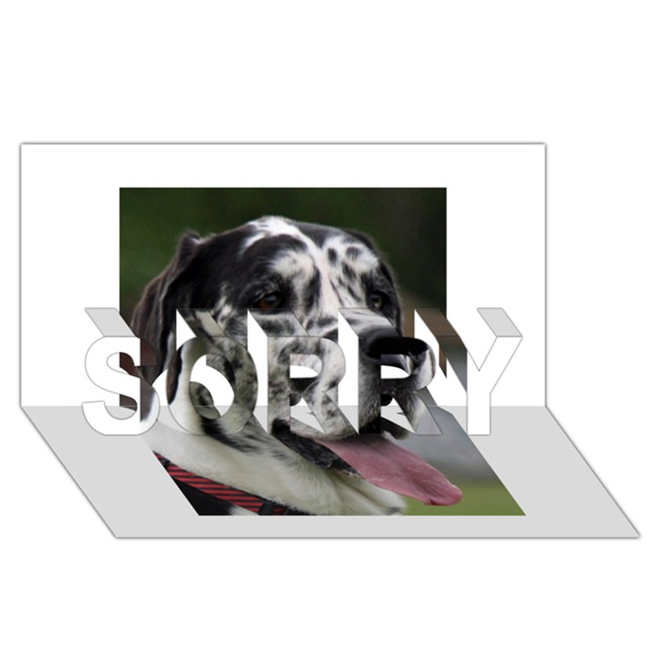 Great Dane harlequin  SORRY 3D Greeting Card (8x4)