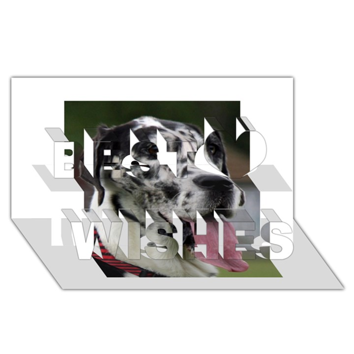 Great Dane harlequin  Best Wish 3D Greeting Card (8x4)