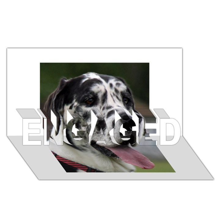 Great Dane harlequin  ENGAGED 3D Greeting Card (8x4)