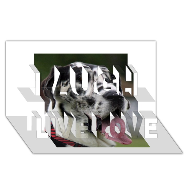 Great Dane harlequin  Laugh Live Love 3D Greeting Card (8x4)