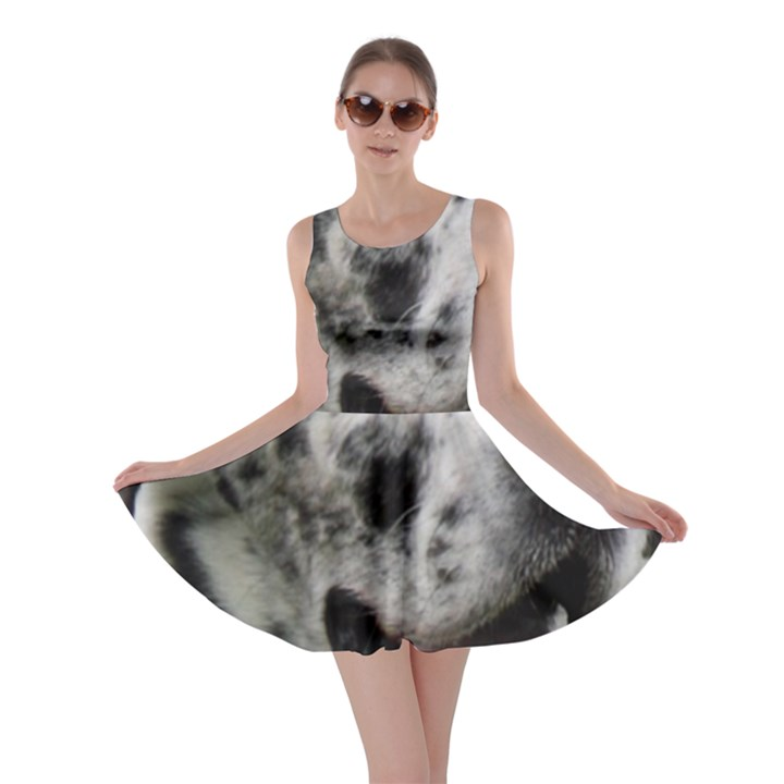 Great Dane harlequin  Skater Dress