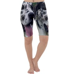 Great Dane harlequin  Cropped Leggings