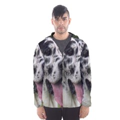 Great Dane harlequin  Hooded Wind Breaker (Men)
