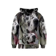 Great Dane harlequin  Kids  Zipper Hoodie