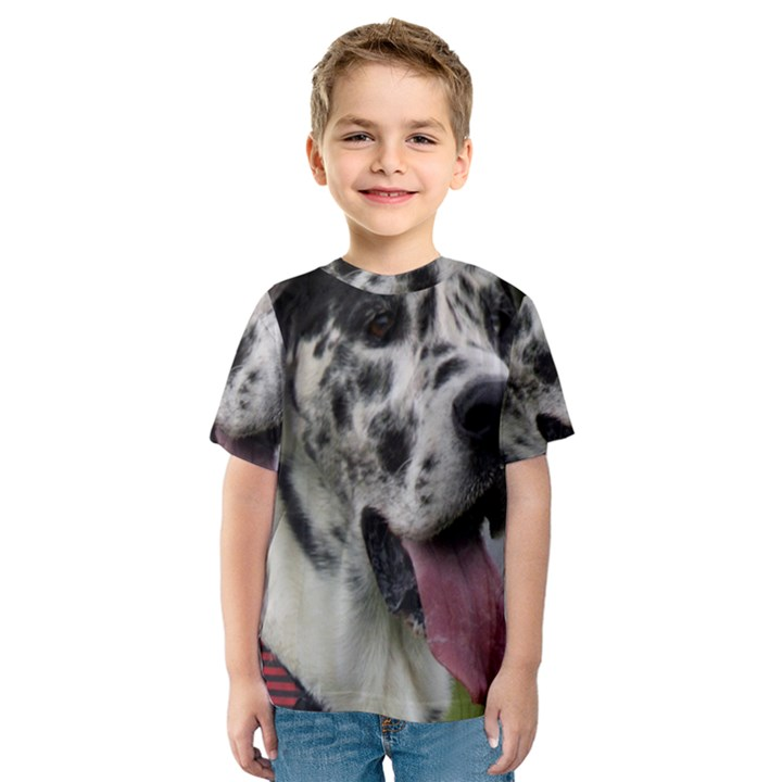 Great Dane harlequin  Kids  Sport Mesh Tee
