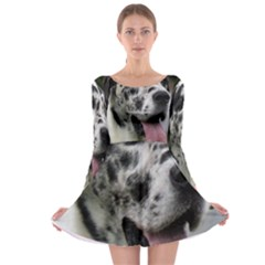 Great Dane harlequin  Long Sleeve Skater Dress