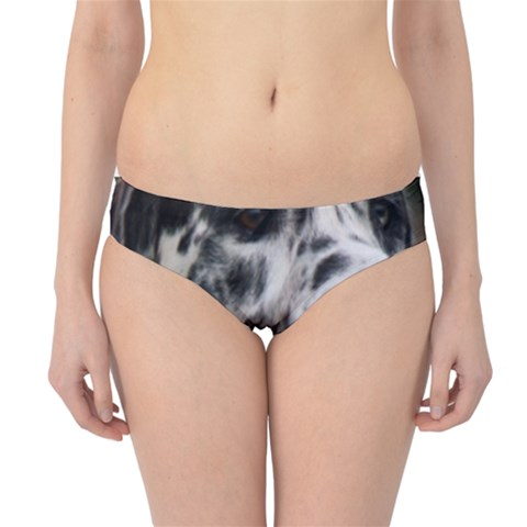 Great Dane harlequin  Hipster Bikini Bottoms