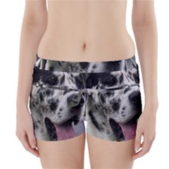 Great Dane harlequin  Boyleg Bikini Wrap Bottoms