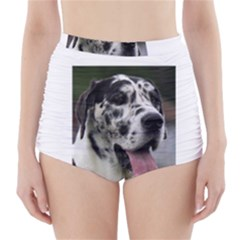 Great Dane harlequin  High-Waisted Bikini Bottoms