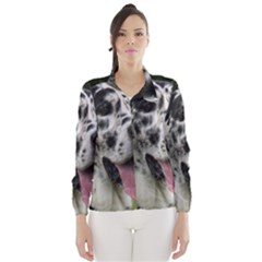 Great Dane harlequin  Wind Breaker (Women)