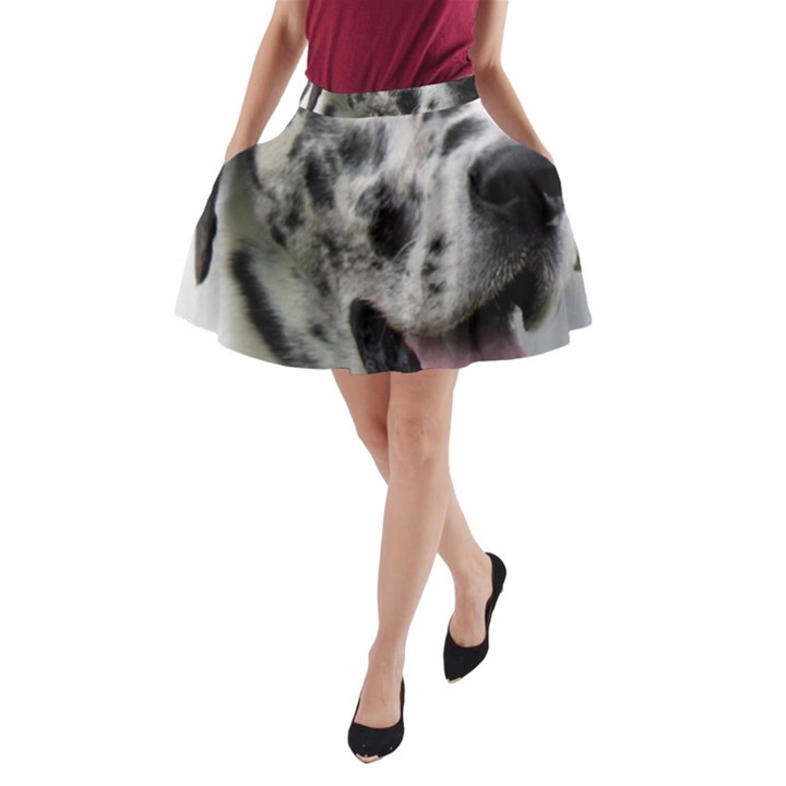 Great Dane harlequin  A-Line Pocket Skirt