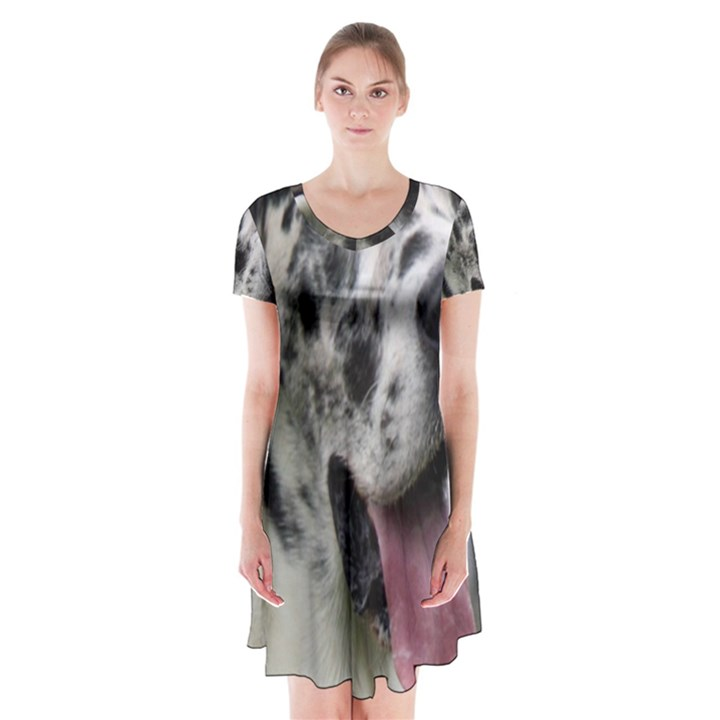 Great Dane harlequin  Short Sleeve V-neck Flare Dress