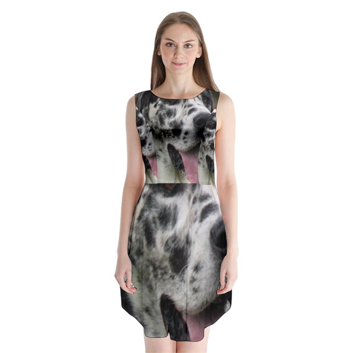 Great Dane harlequin  Sleeveless Chiffon Dress