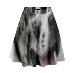 Great Dane harlequin  High Waist Skirt