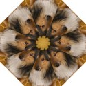 Shetland Sheepdog Straight Umbrellas View1