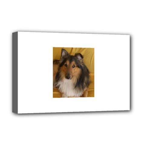 Shetland Sheepdog Deluxe Canvas 18  x 12