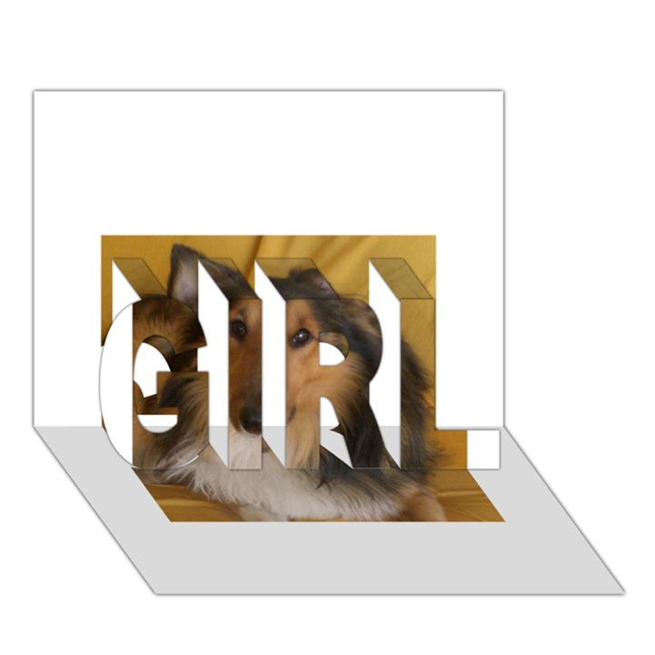 Shetland Sheepdog GIRL 3D Greeting Card (7x5)