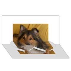 Shetland Sheepdog Twin Heart Bottom 3D Greeting Card (8x4)