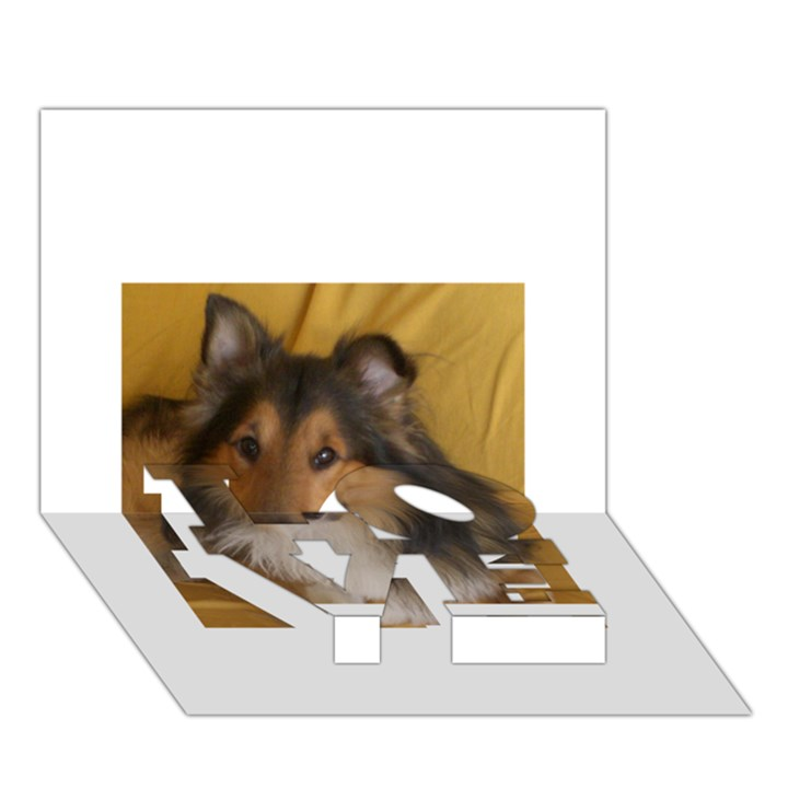 Shetland Sheepdog LOVE Bottom 3D Greeting Card (7x5)