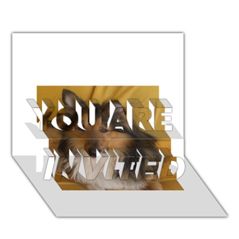 Shetland Sheepdog YOU ARE INVITED 3D Greeting Card (7x5)