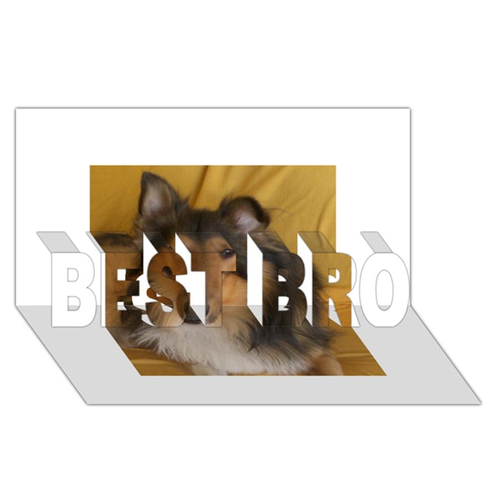 Shetland Sheepdog BEST BRO 3D Greeting Card (8x4)