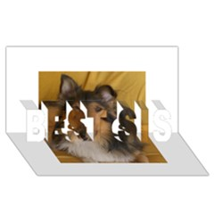 Shetland Sheepdog BEST SIS 3D Greeting Card (8x4)