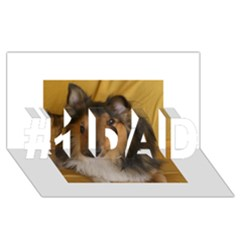 Shetland Sheepdog #1 DAD 3D Greeting Card (8x4)