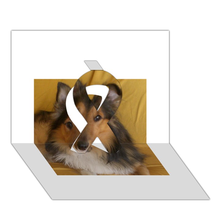 Shetland Sheepdog Ribbon 3D Greeting Card (7x5)