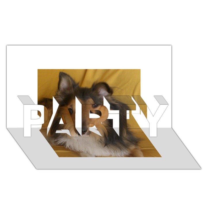 Shetland Sheepdog PARTY 3D Greeting Card (8x4)
