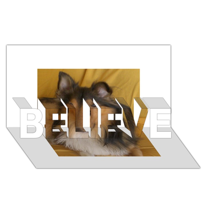 Shetland Sheepdog BELIEVE 3D Greeting Card (8x4)