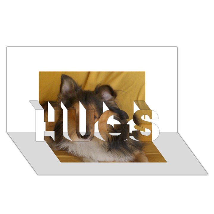 Shetland Sheepdog HUGS 3D Greeting Card (8x4)