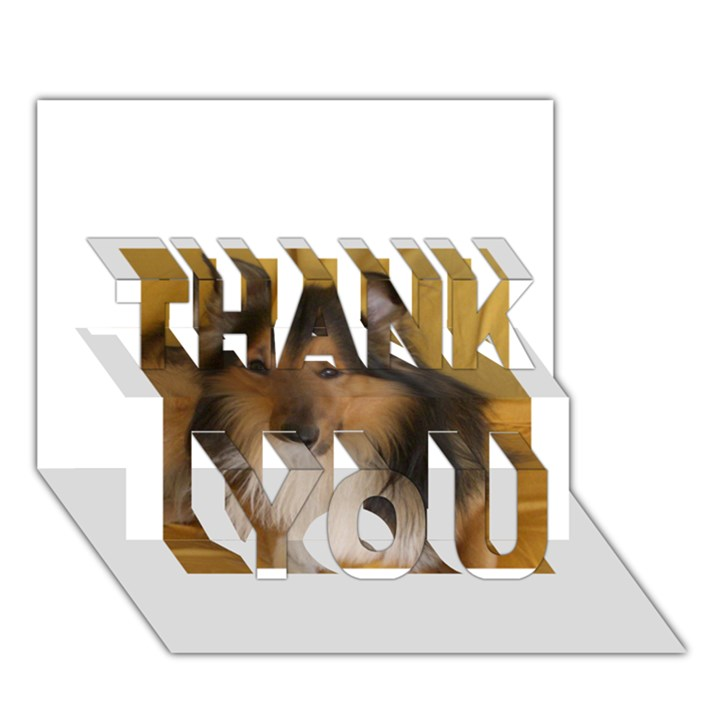 Shetland Sheepdog THANK YOU 3D Greeting Card (7x5)