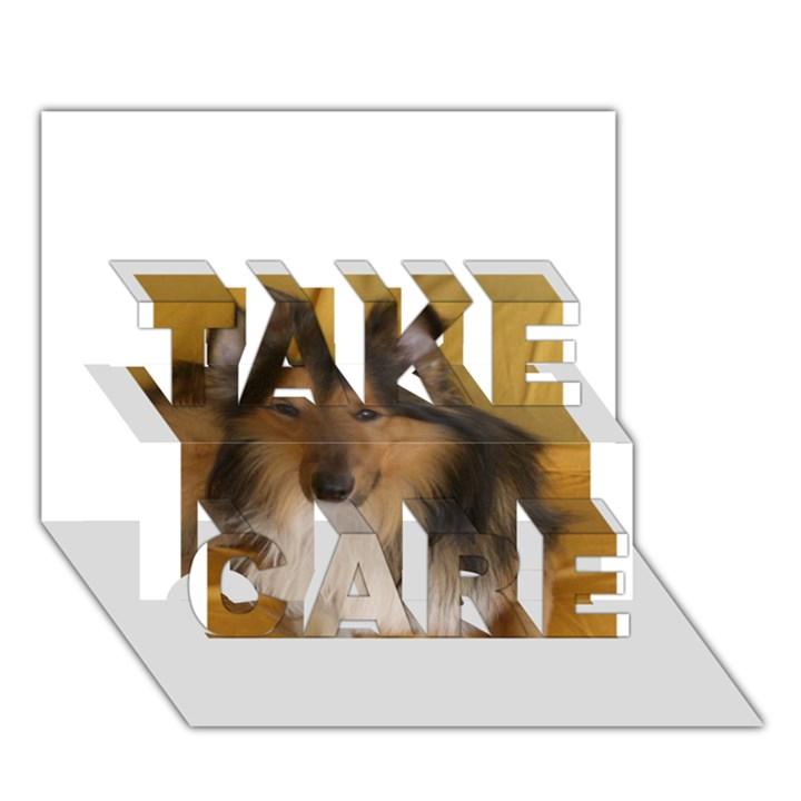 Shetland Sheepdog TAKE CARE 3D Greeting Card (7x5)