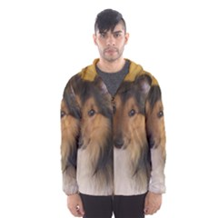 Shetland Sheepdog Hooded Wind Breaker (Men)
