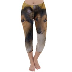 Shetland Sheepdog Capri Winter Leggings