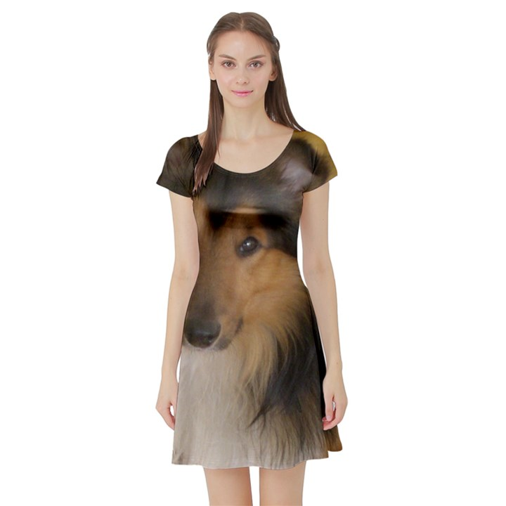 Shetland Sheepdog Short Sleeve Skater Dress