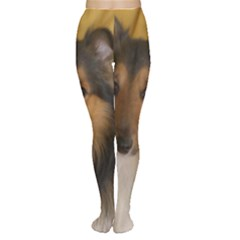 Shetland Sheepdog Women s Tights