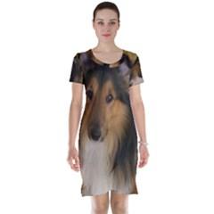 Shetland Sheepdog Short Sleeve Nightdress