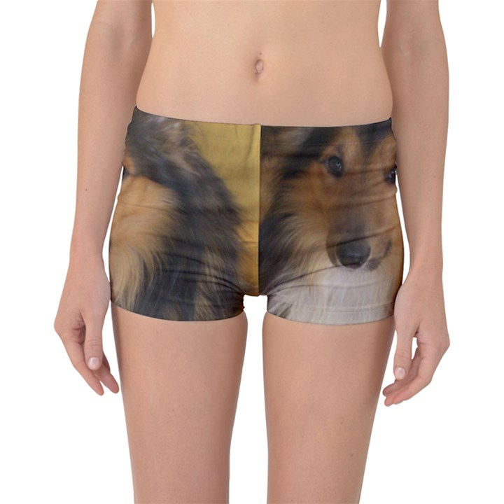 Shetland Sheepdog Boyleg Bikini Bottoms