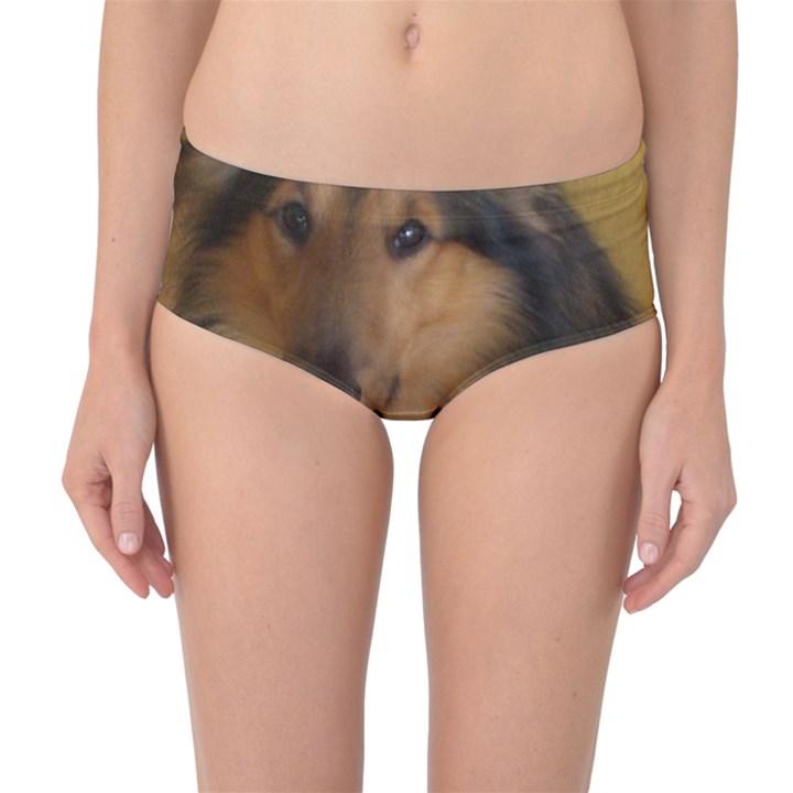 Shetland Sheepdog Mid-Waist Bikini Bottoms